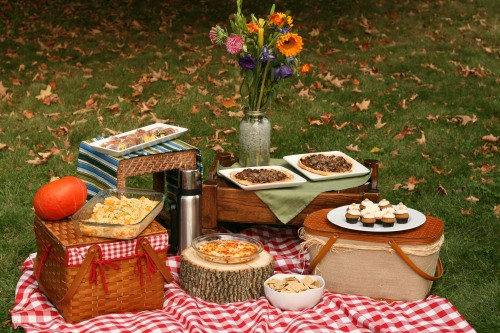 food and tablecloth for camping
