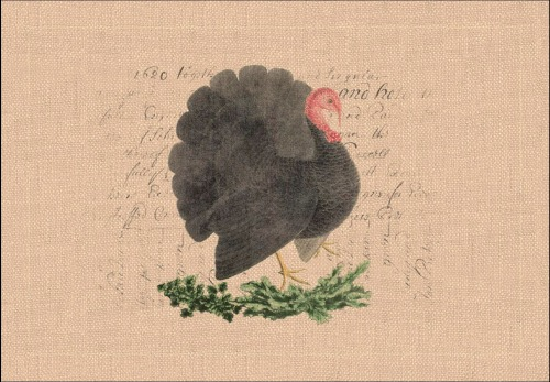 turkey place mat