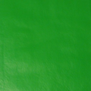 Kelly Green Tablecloth